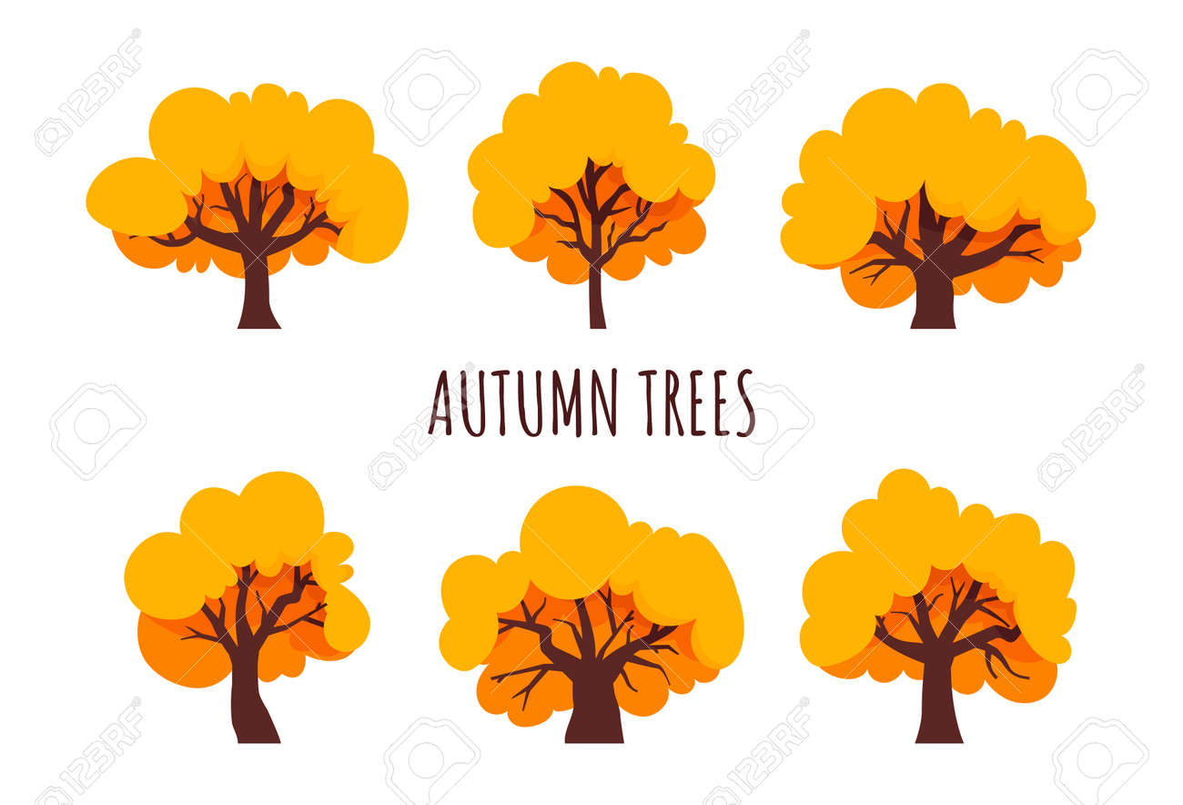 Autumn trees set. Yellow tree, flat style. Isolated icons. Vector - 152024745