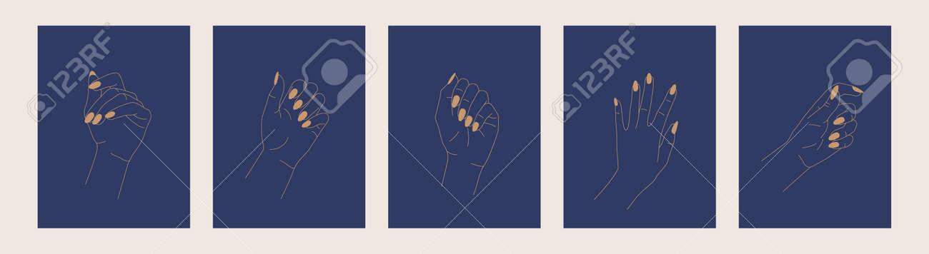 Hand drawn Beautiful Female hands. Line art. Vector - 152125899