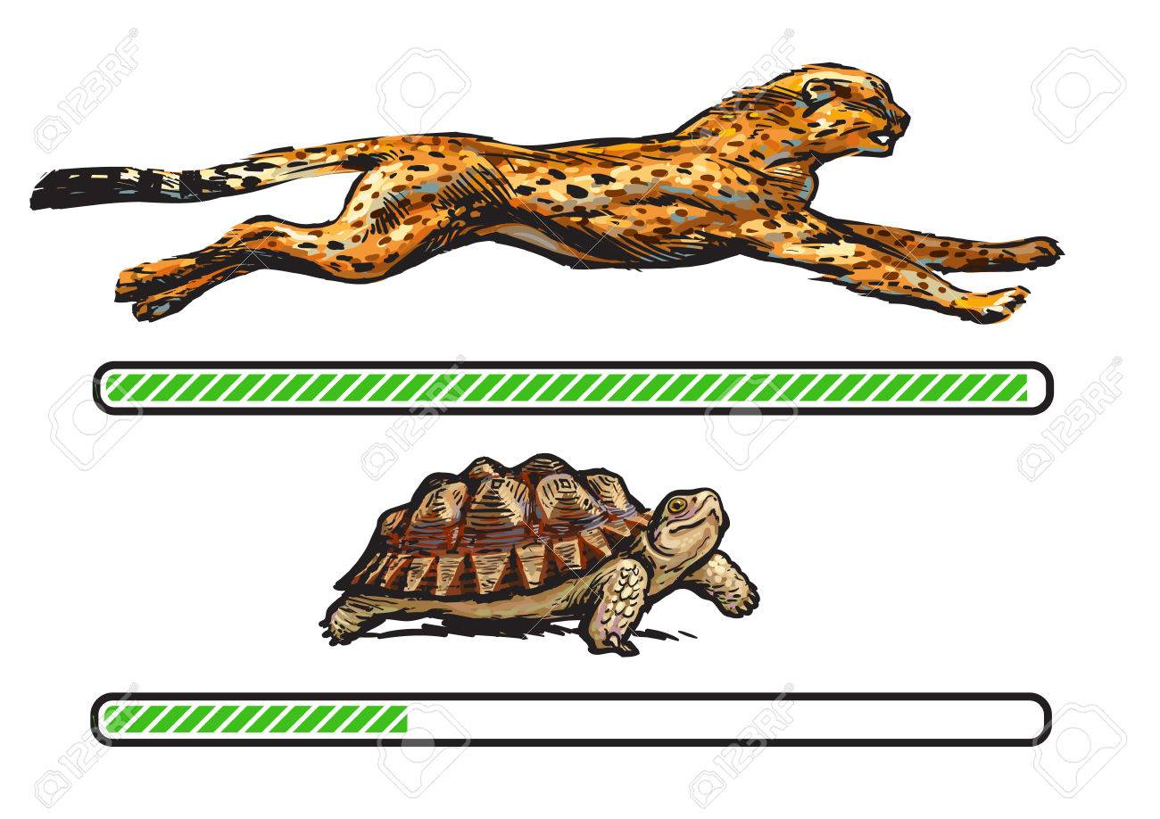 Cheetah and turtle. Fast and slow loading bar. - 81127839