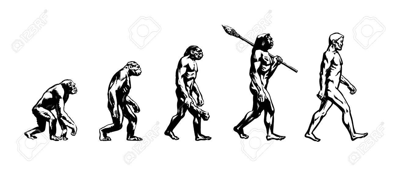 Evolution of man - 87661719