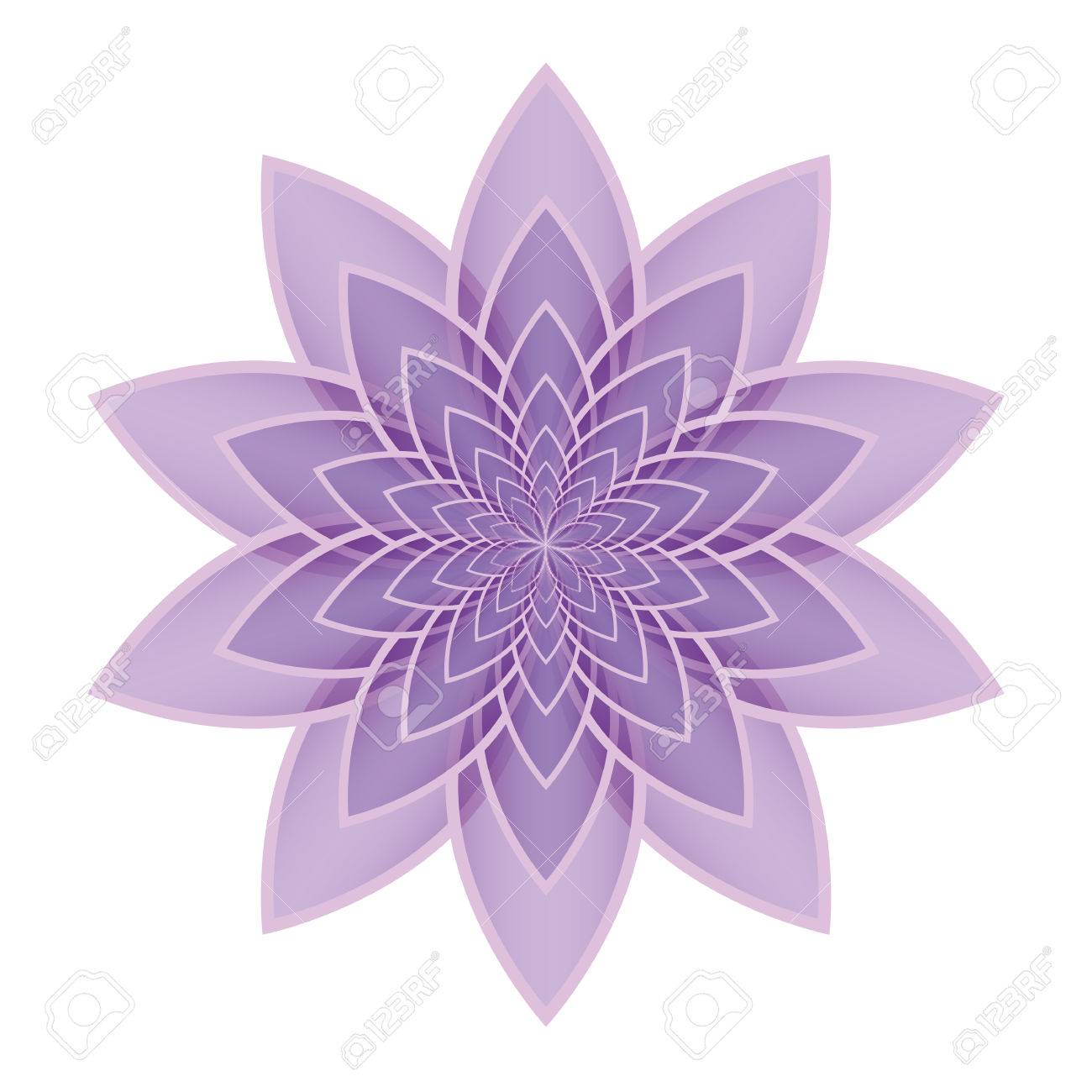 Lilac lotus flower on a white background isolated object vector lilac lotus flower on a white background isolated object vector illustration stock vector izmirmasajfo