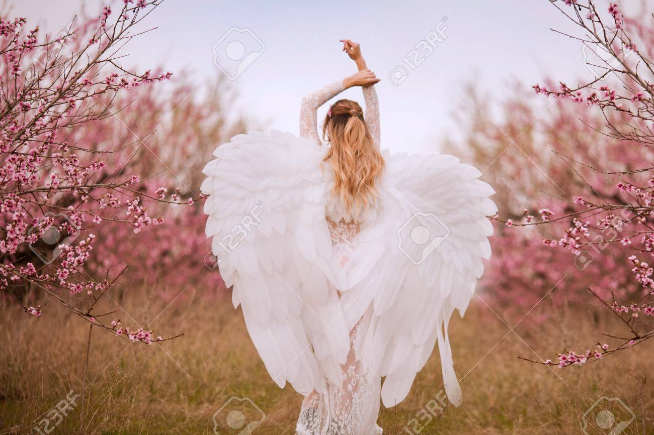 Beautiful yound woman with giant white angel wings - 123015859