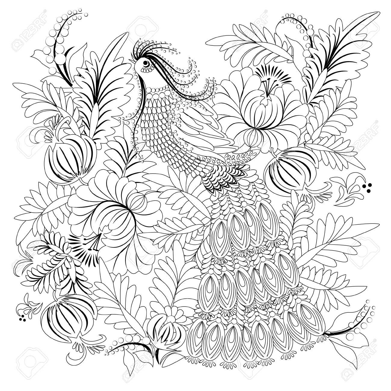 Kleurplaten Over Vogels.Tropische Wilde Vogel Kleurboek Voor Volwassen En Oudere Kinderen Kleurplaat Overzicht Vectorillustratie