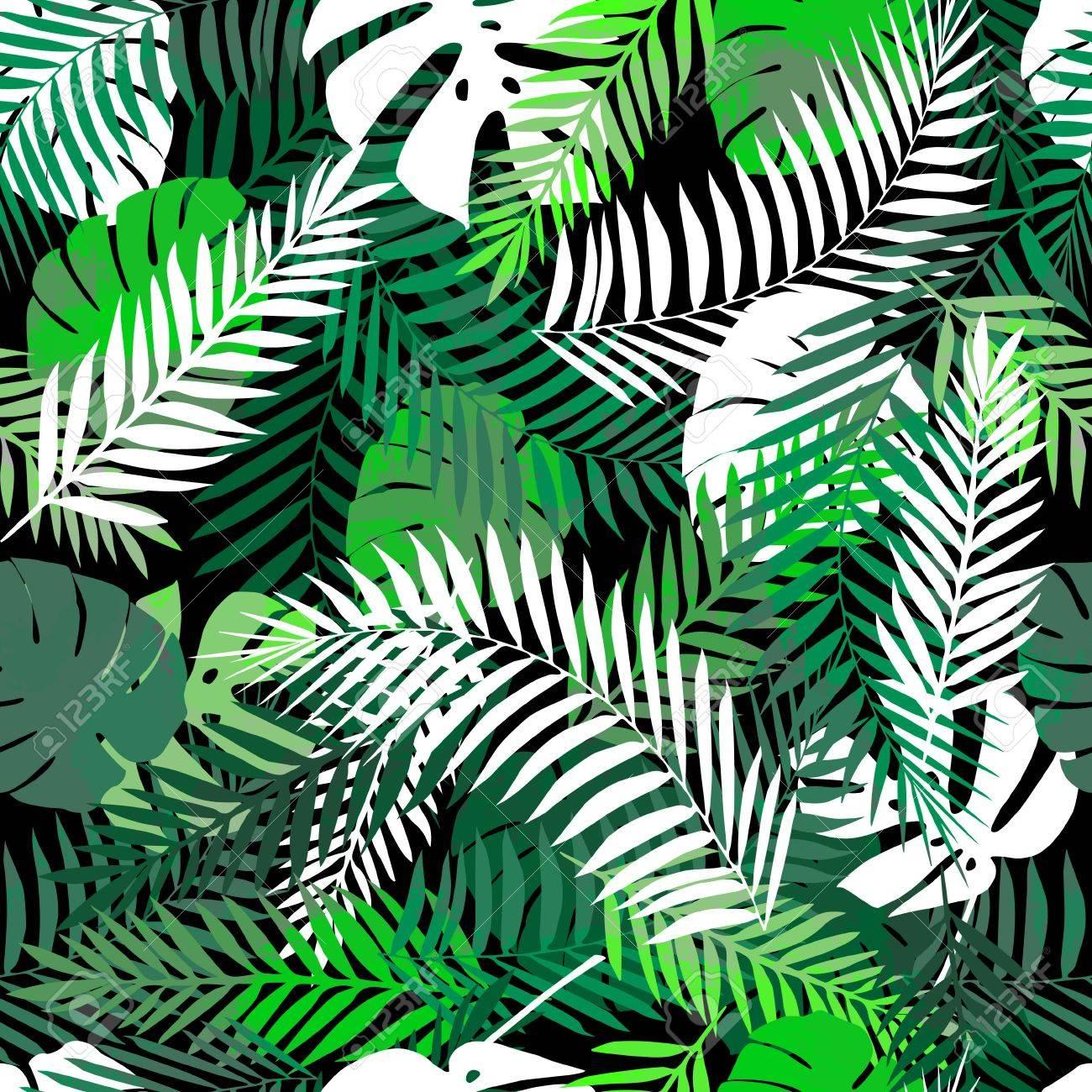 Summer Background Tropical Ou Le Papier Peint Pour Differents