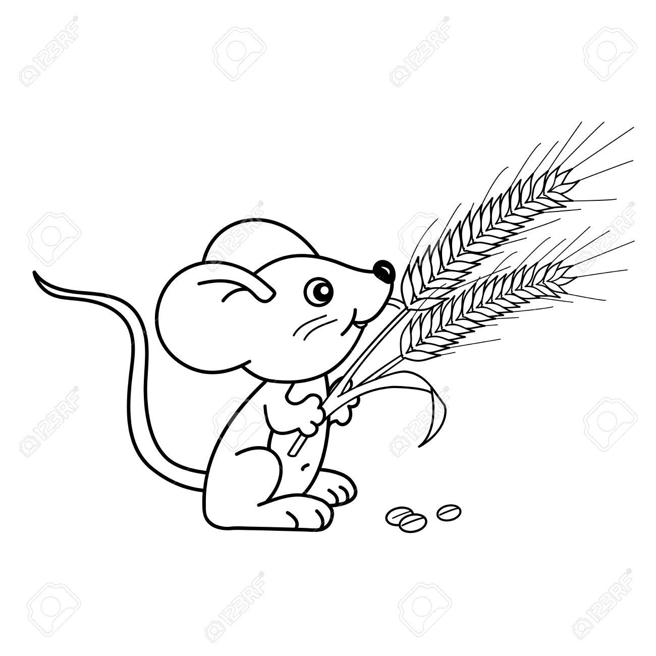 Página Para Colorear Esquema De Dibujos Animados Pequeño Ratón Con