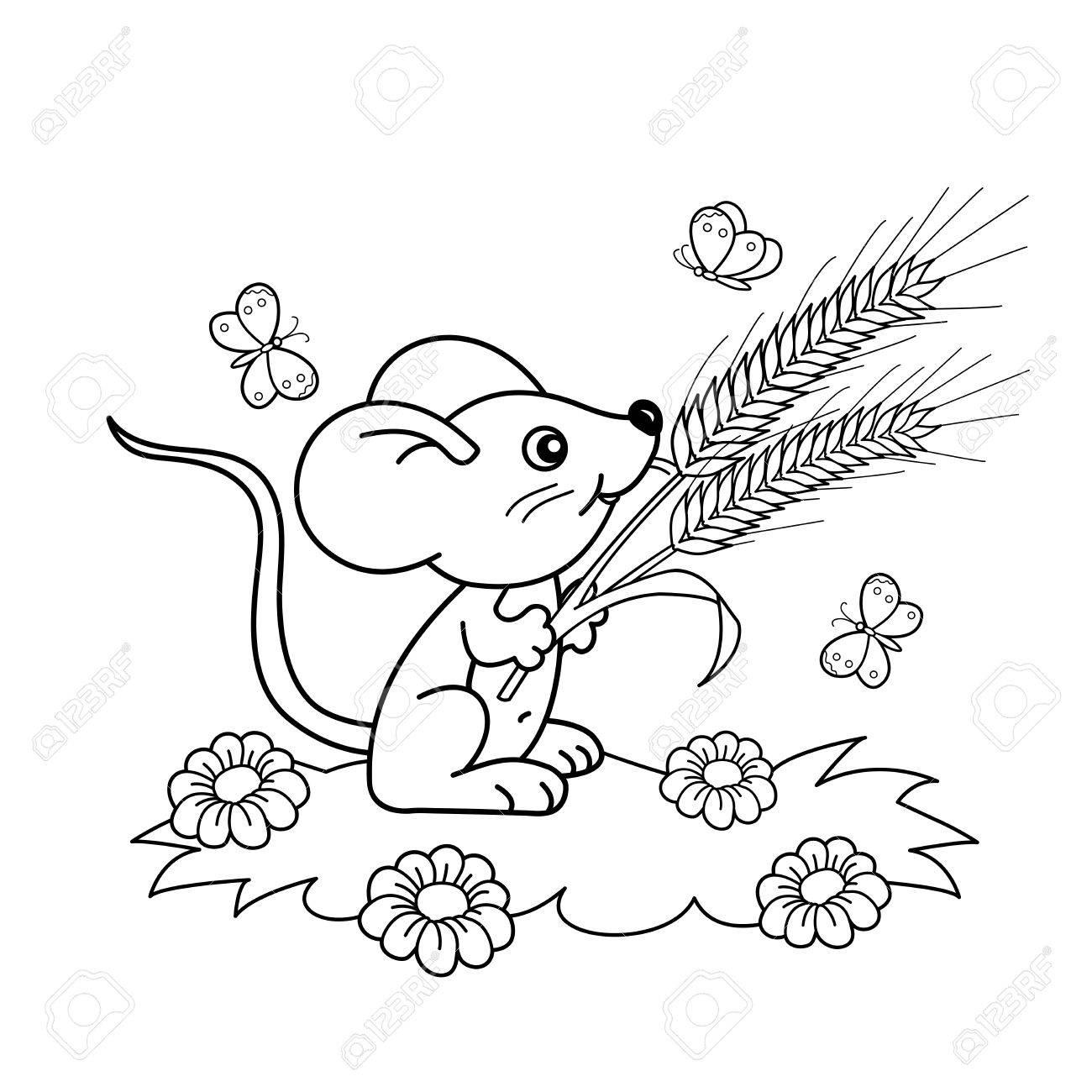 Página Para Colorear Esquema De Pequeño Ratón De Dibujos Animados ...