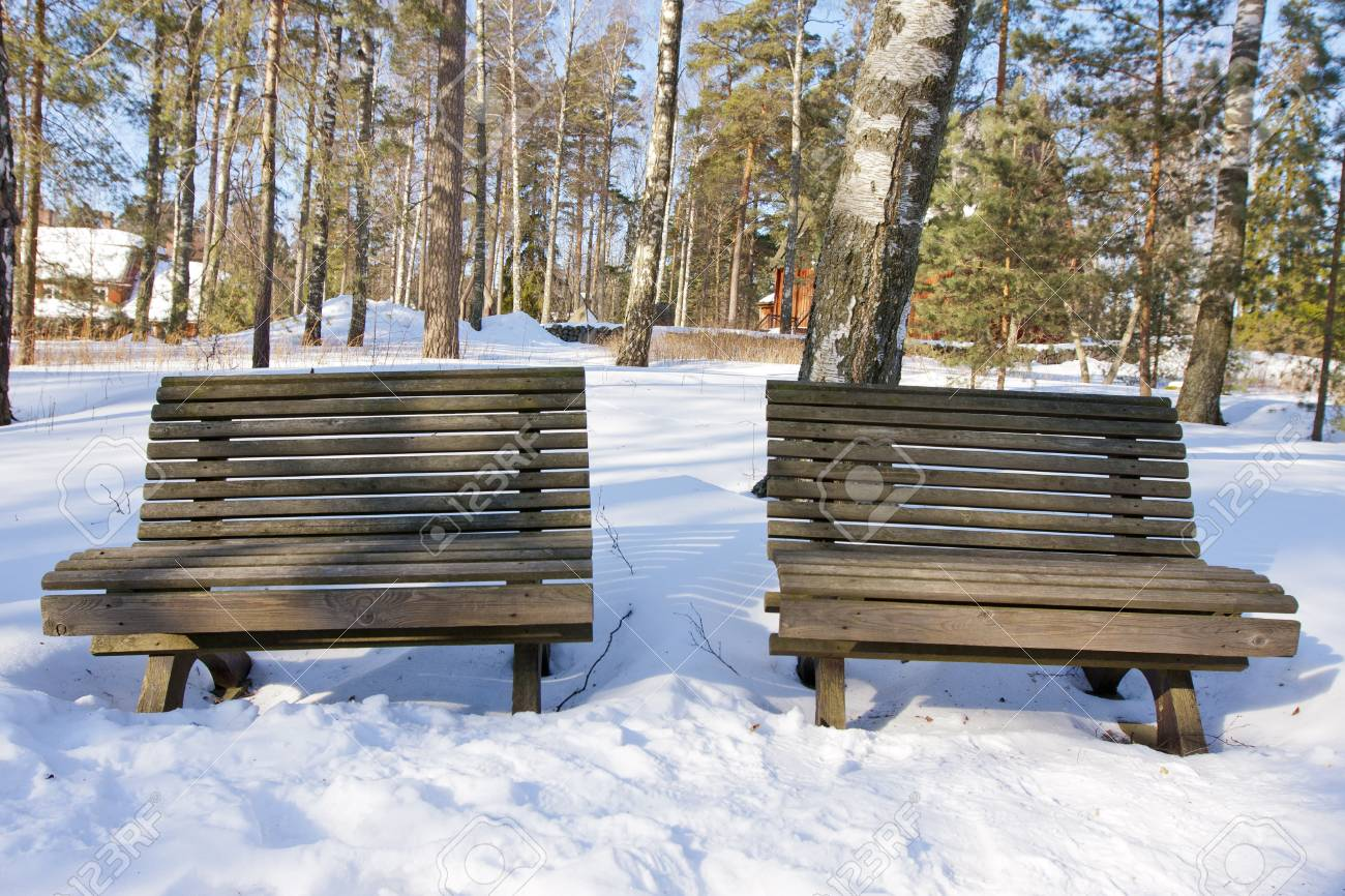 Two Old Vintage Wooden Benches In The Winter Wood In The Sunny