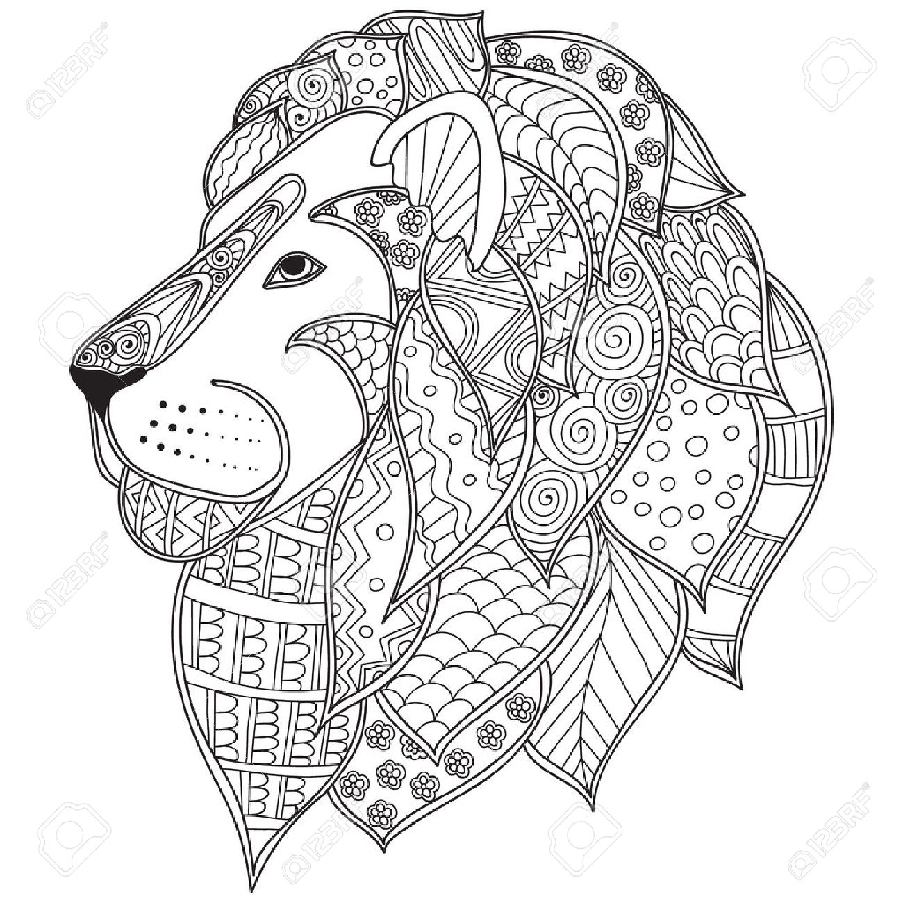 Coloring Pages Lion Head. Hand drawn ornamental outline lion head illustration decorated with  abstract doodles Coloring pages for adults Drawn Ornamental Outline Lion Head Illustration Decorated