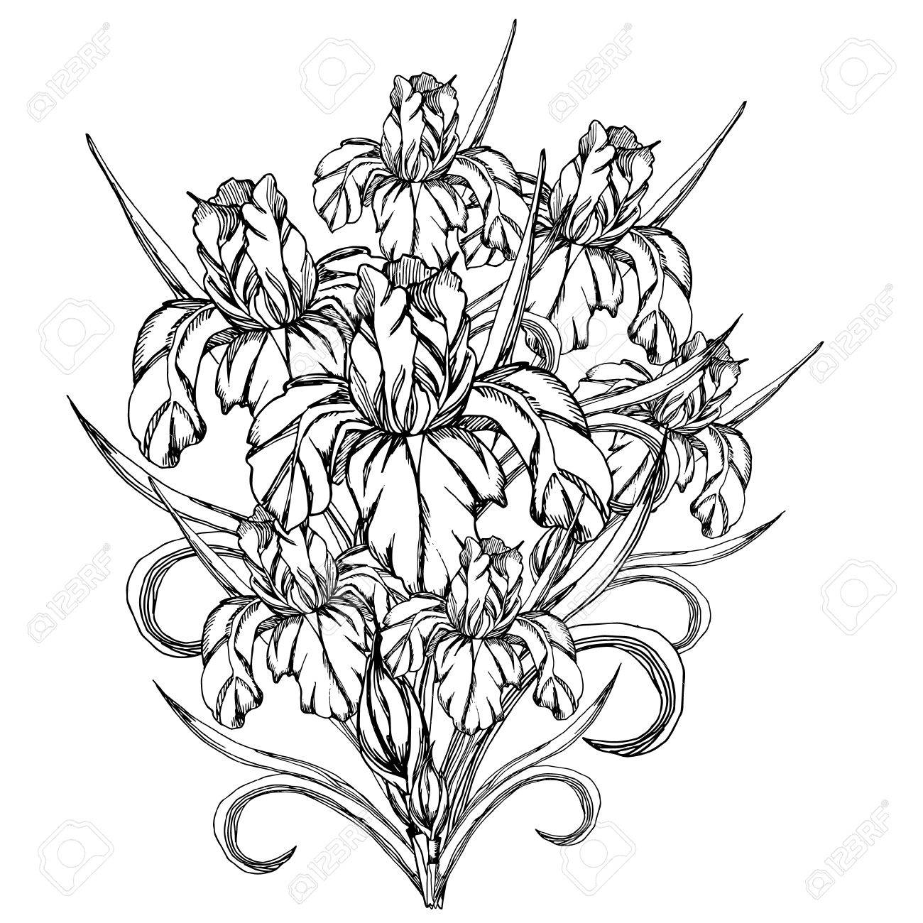 Nice flower patterns to color hello kitty paintings coloring pages charming hawaiian flower template gallery resume ideas namanasacom 56483915 sketch flower vector decorative trace of iris izmirmasajfo