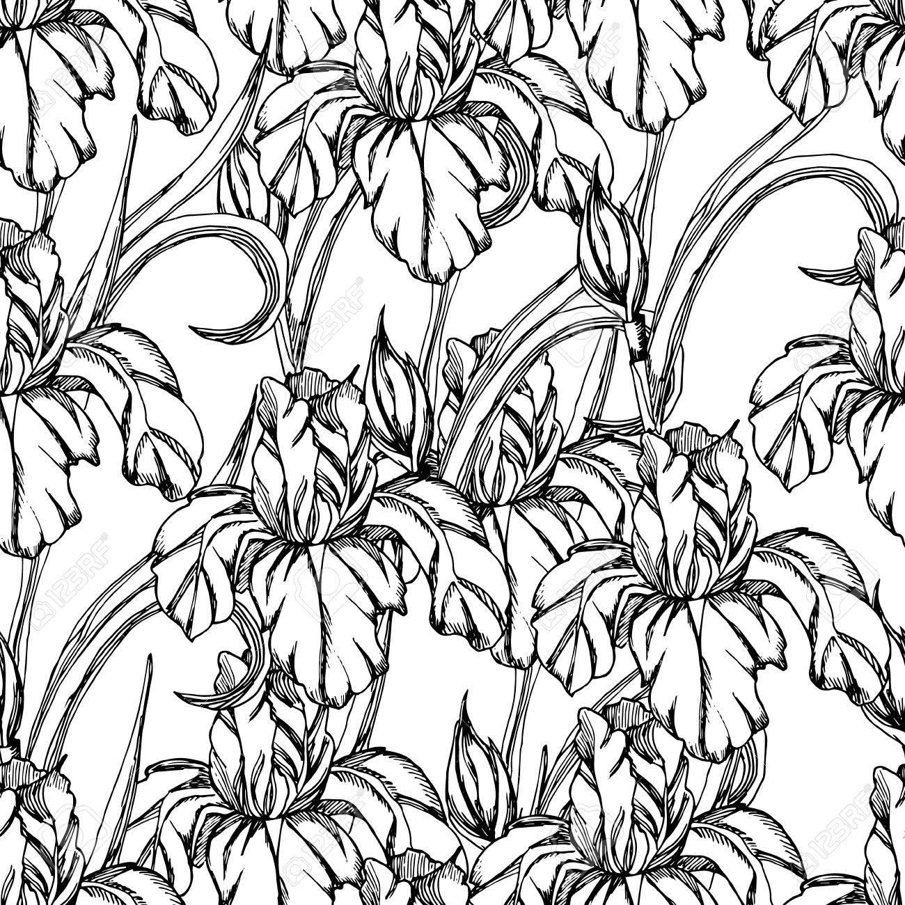 Seamless Patternetch Flowerctor Decorative Trace Of Iris
