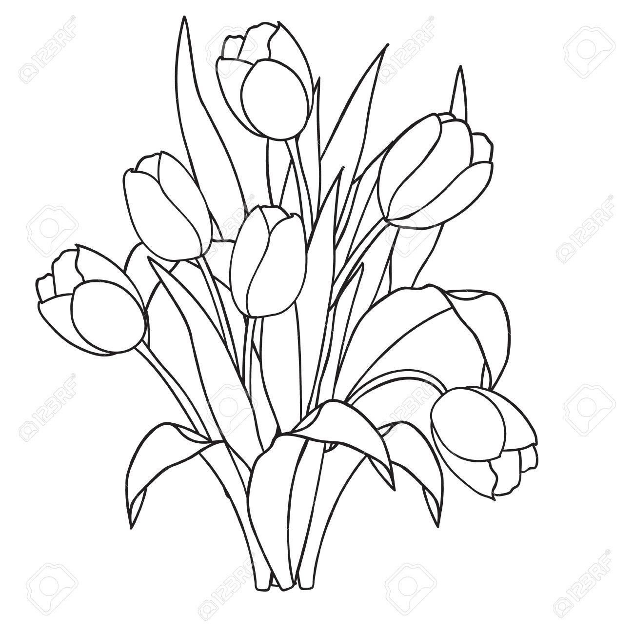 Tulips Flowers Ornamental Black And White Coloring Pages Vector Royalty Free Cliparts Vectors And Stock Illustration Image 56729813
