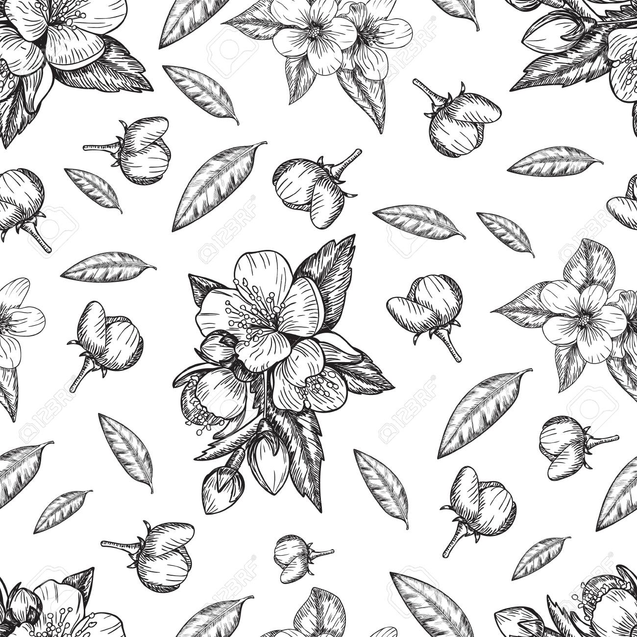 seamless pattern flowers and leaves of the apple tree sketch Apple Branch seamless pattern flowers and leaves of the apple tree sketch illustration stock vector