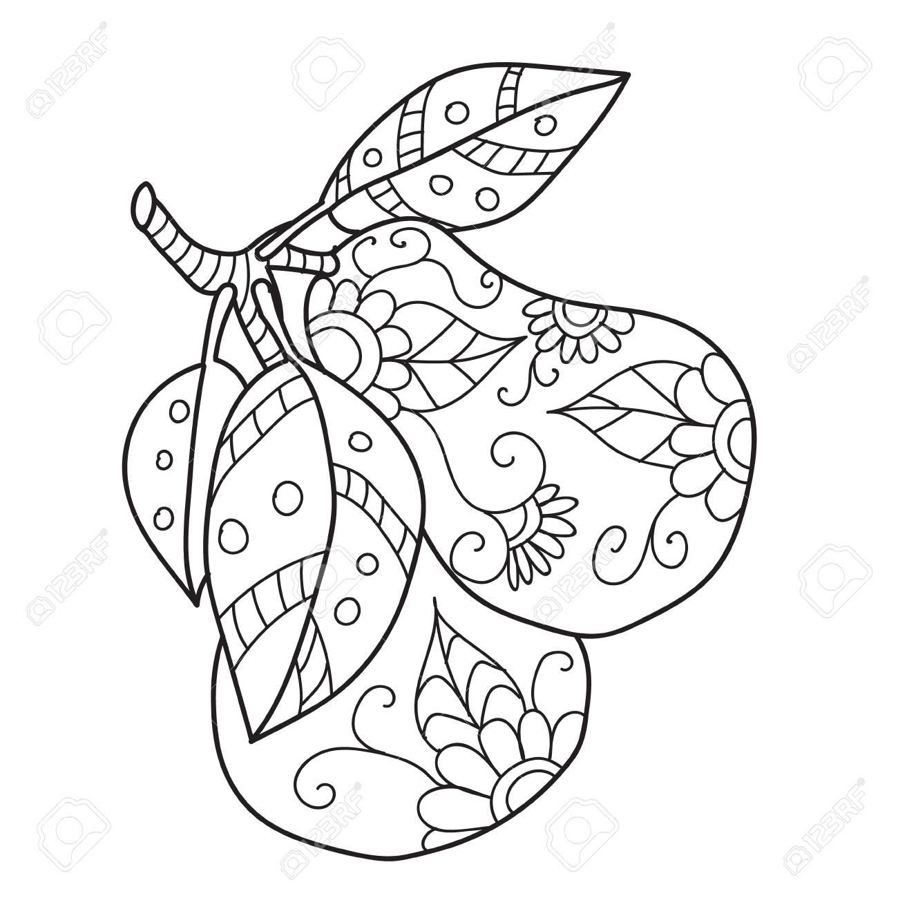 Dibujos Para Colorear Para Adultos. Dibujado A Mano Decorativos
