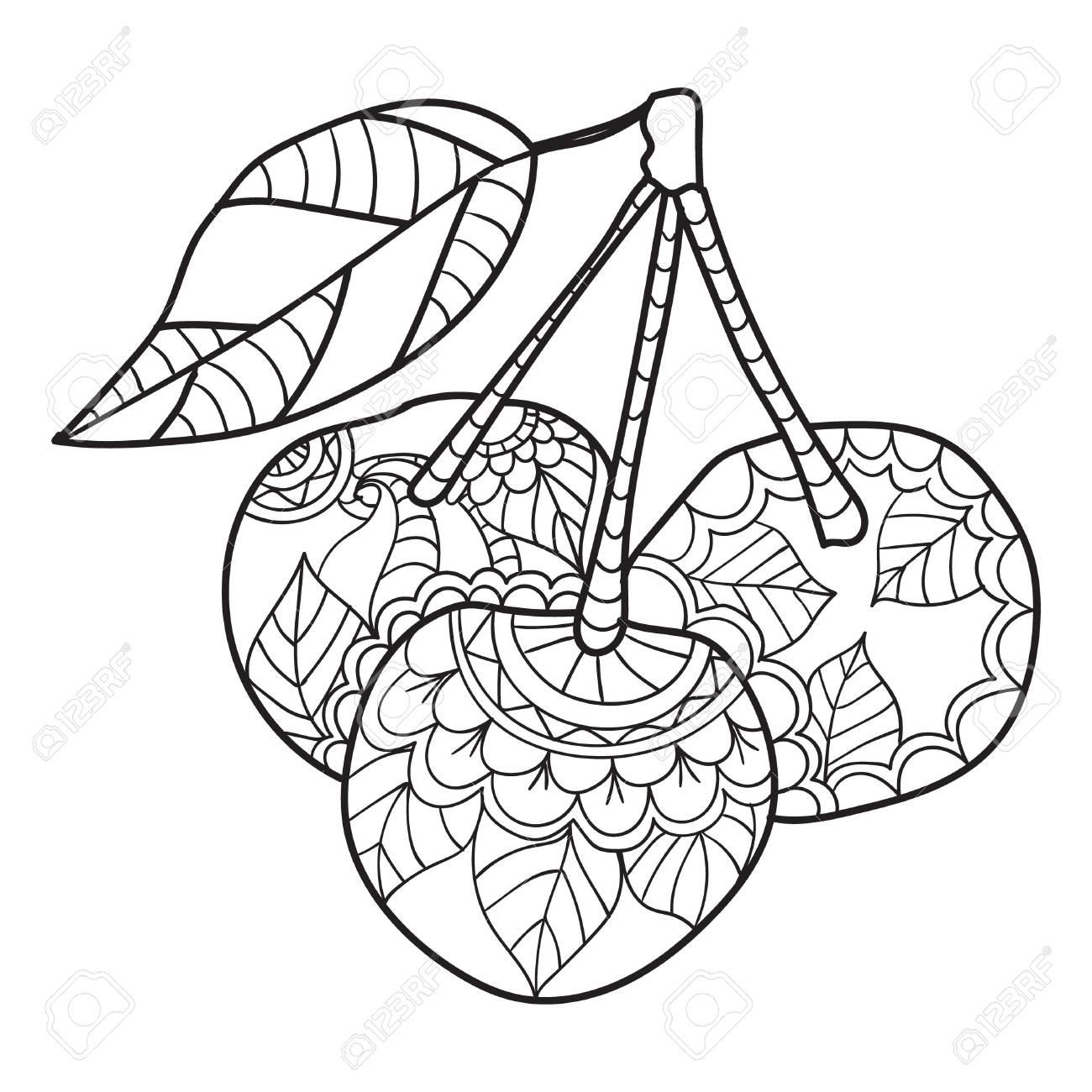 Dibujos Para Colorear Para Adultos Bosquejo De Cereza Ilustración De Vector De Frutas