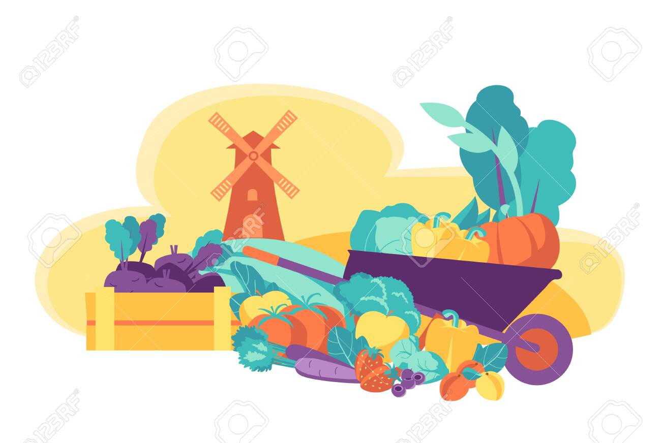 Eco friendly seasonal products. Fresh vegetables and fruits. - 140802642