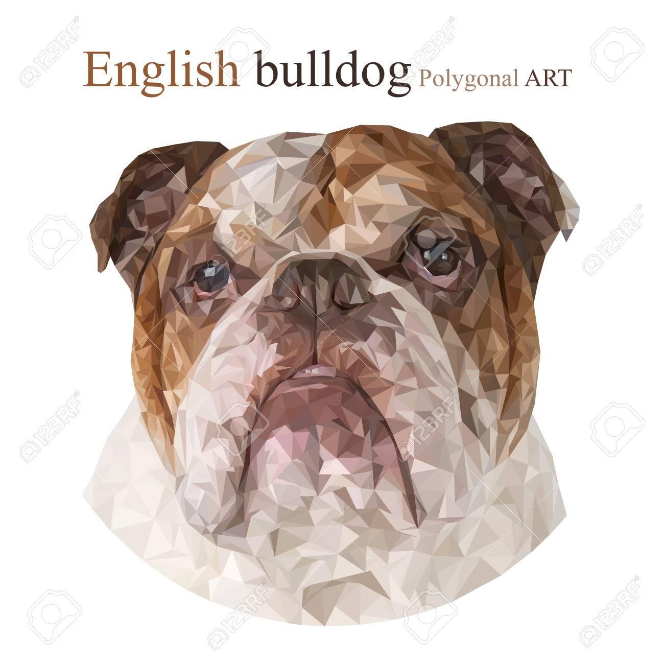 Englische Bulldogge Polygonal Zeichnung Die Bitmap Auf Einem