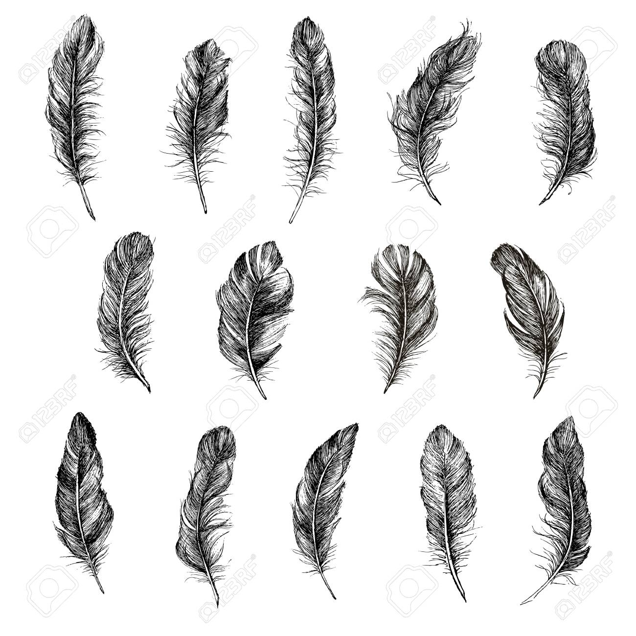 Feather icon set. Hand drawn illustration. Doodle sketch. - 151192841