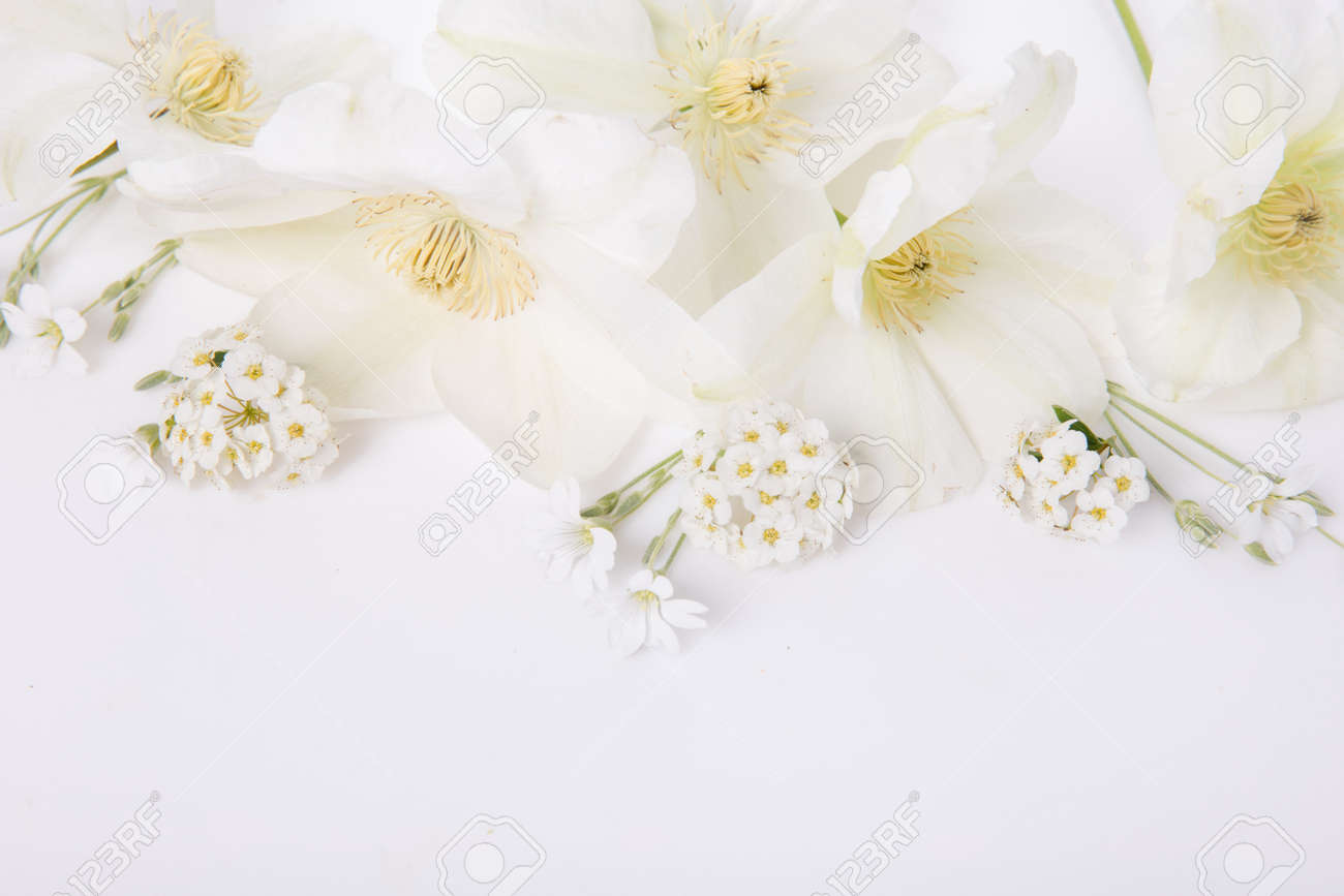 Flowers composition. Frame made of pink peony flowers on white background. Flat lay, top view, copy space - 164485946
