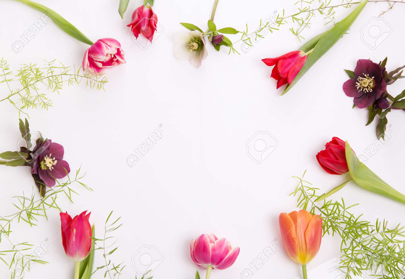 Floral frame of pink and purple tulips and hellebore on white background. Flat lay, top view - 164826623
