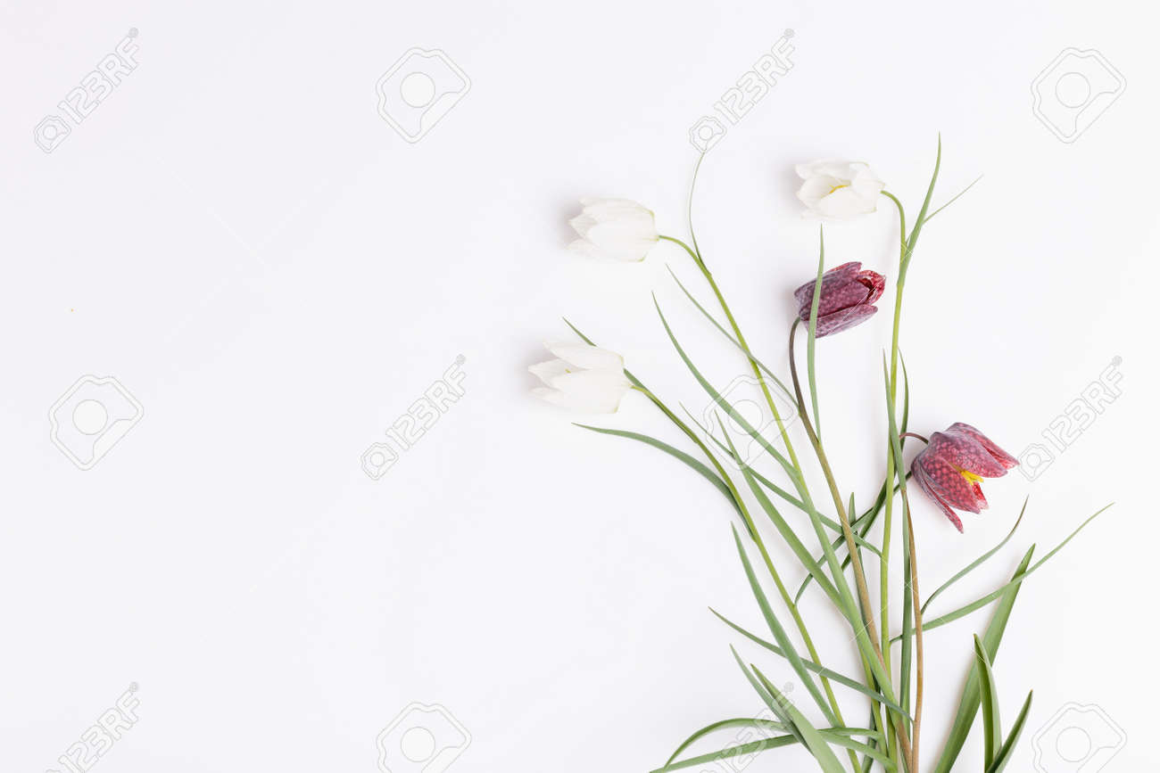 Floral frame of flowers grouse chess white and purple on white background. Flat lay, top view. - 164900807