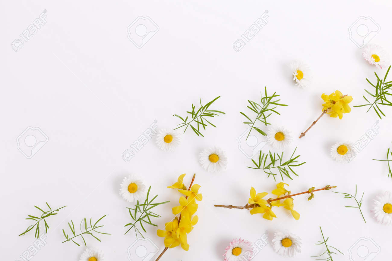 Spring frame of small flowers and daisy, floral arrangement - 164900707