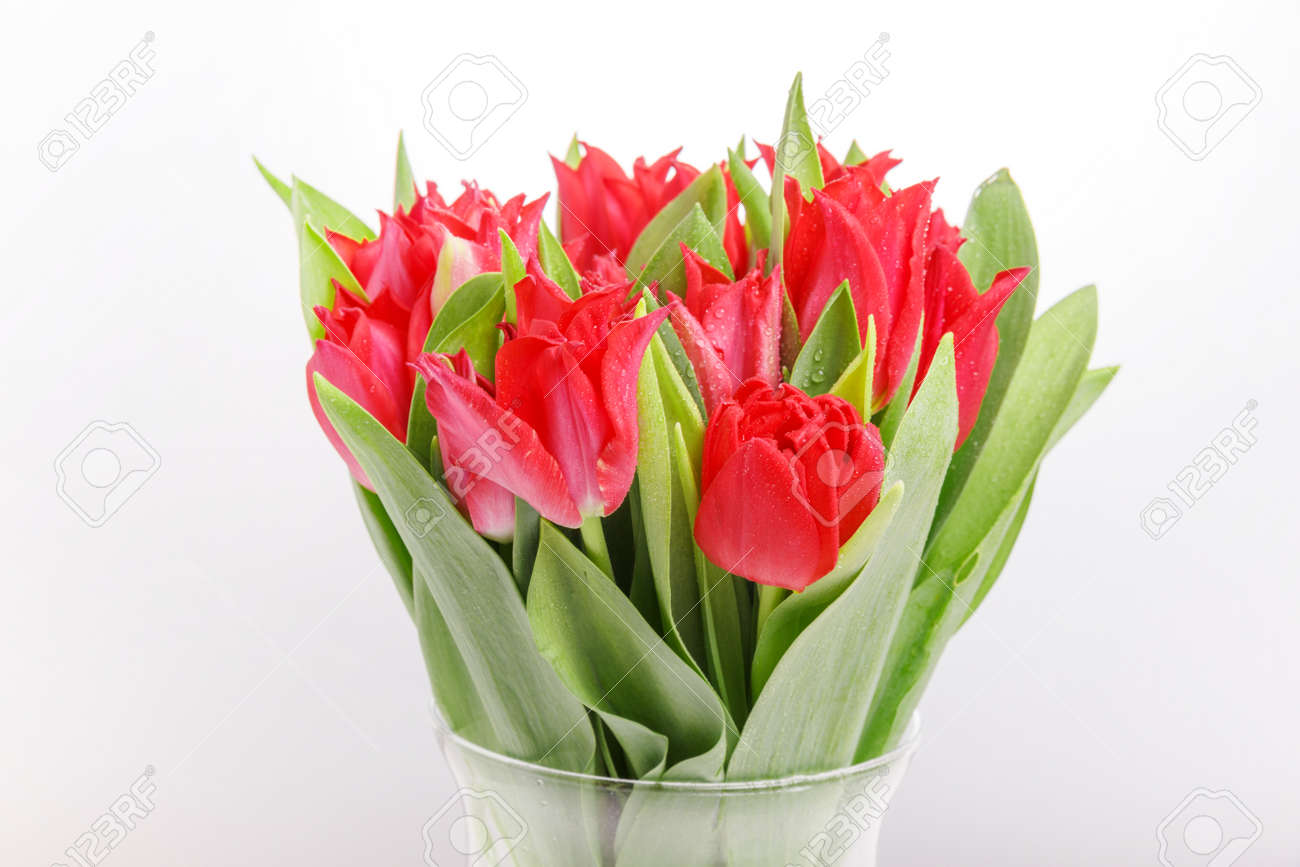Bouquet of pink red tulip on white background. 8 March concept - 164993563