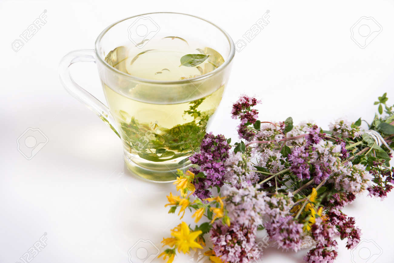 Glass cup of herbal tea with dry oregano flowers on white table background with copy space. - 165139540