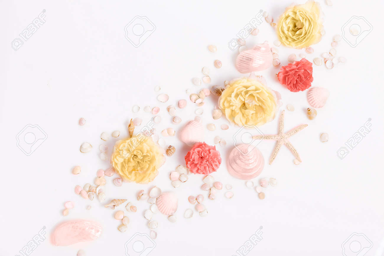 Composition of flowers, frame from rose flowers and seashells, starfish on a white background. Flat lay, top view, - 165161130