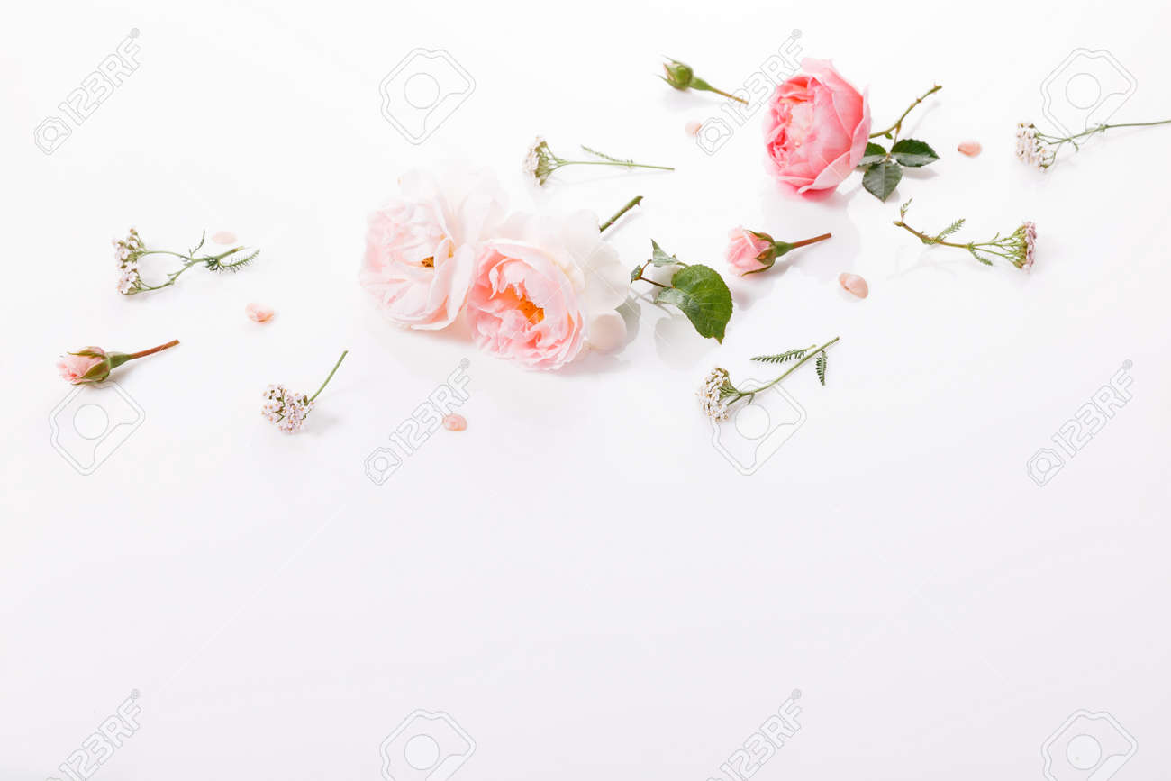 Flowers composition. Frame made of pink rose flowers on white background. Flat lay, top view - 165497626