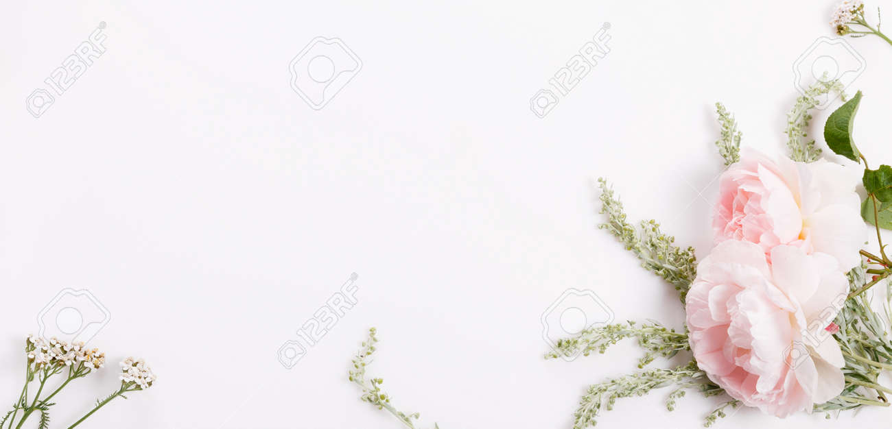 Flowers composition. Frame made of pink rose flowers on white background. Flat lay, top view - 165658051