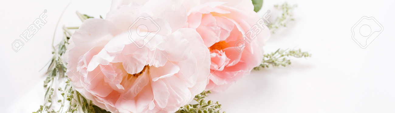 Flowers composition. Frame made of pink rose flowers on white background. Flat lay, top view - 165499669