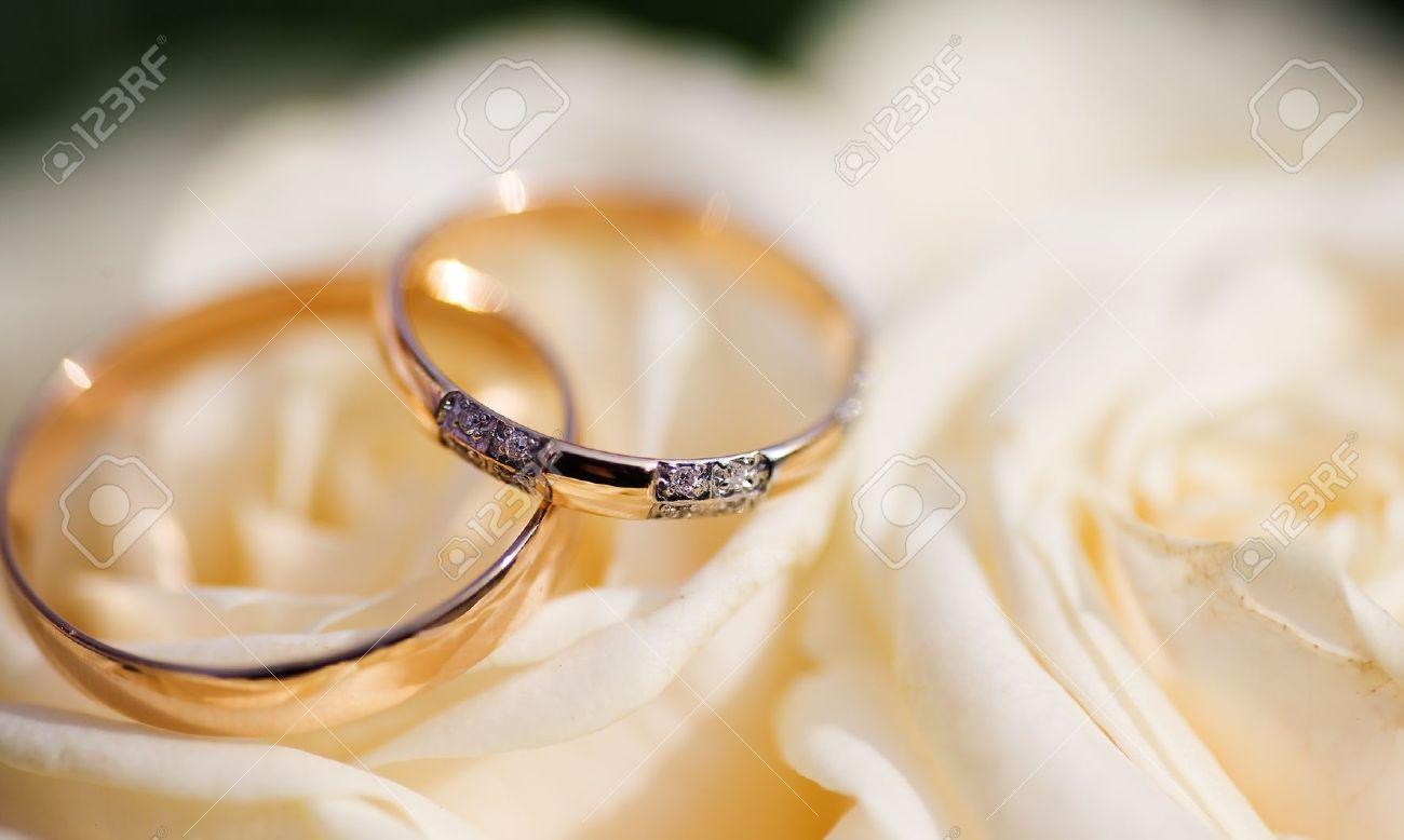 Two Golden Wedding Rings on flowers macro shot - 7925703