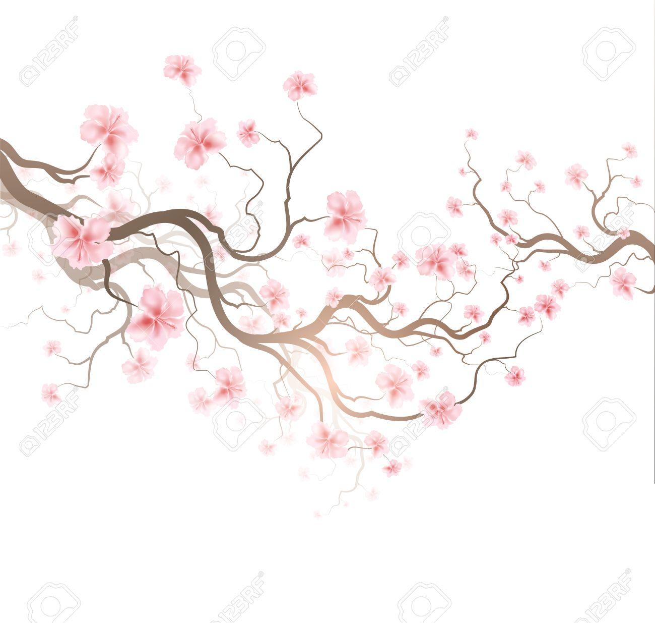 Design Background With Sakura Tree Royalty Free Cliparts Vectors