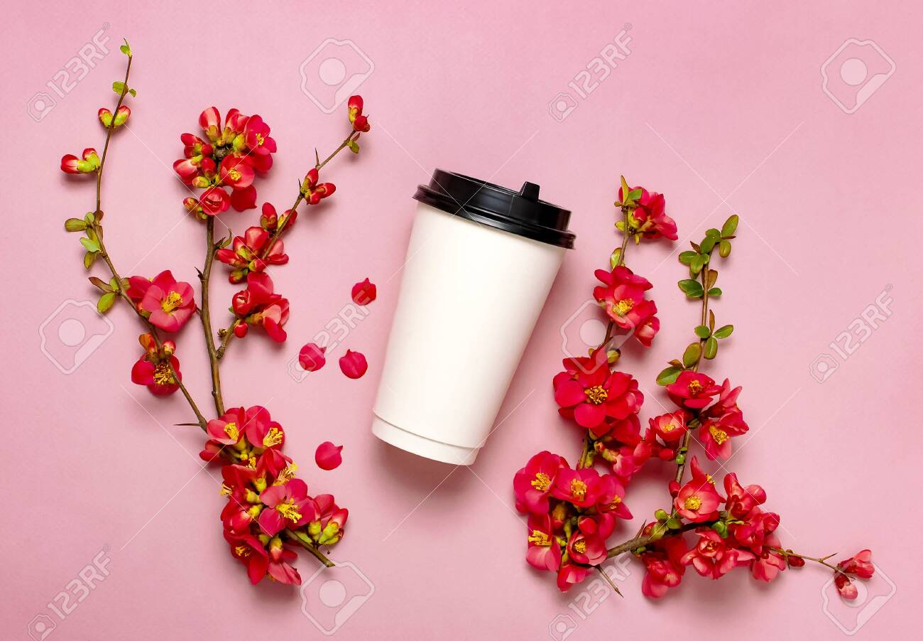 Coffee Or Tea Paper Cup Spring Branches Of Red Flowers On Pink Stock Photo Picture And Royalty Free Image Image 138731948