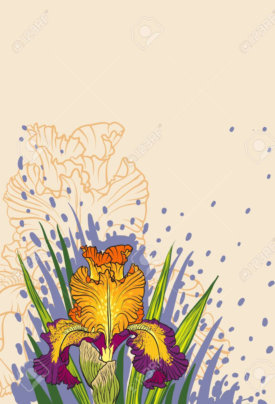 Decorative designs of iris flowers stock photo picture and royalty decorative designs of iris flowers stock photo 23010061 izmirmasajfo
