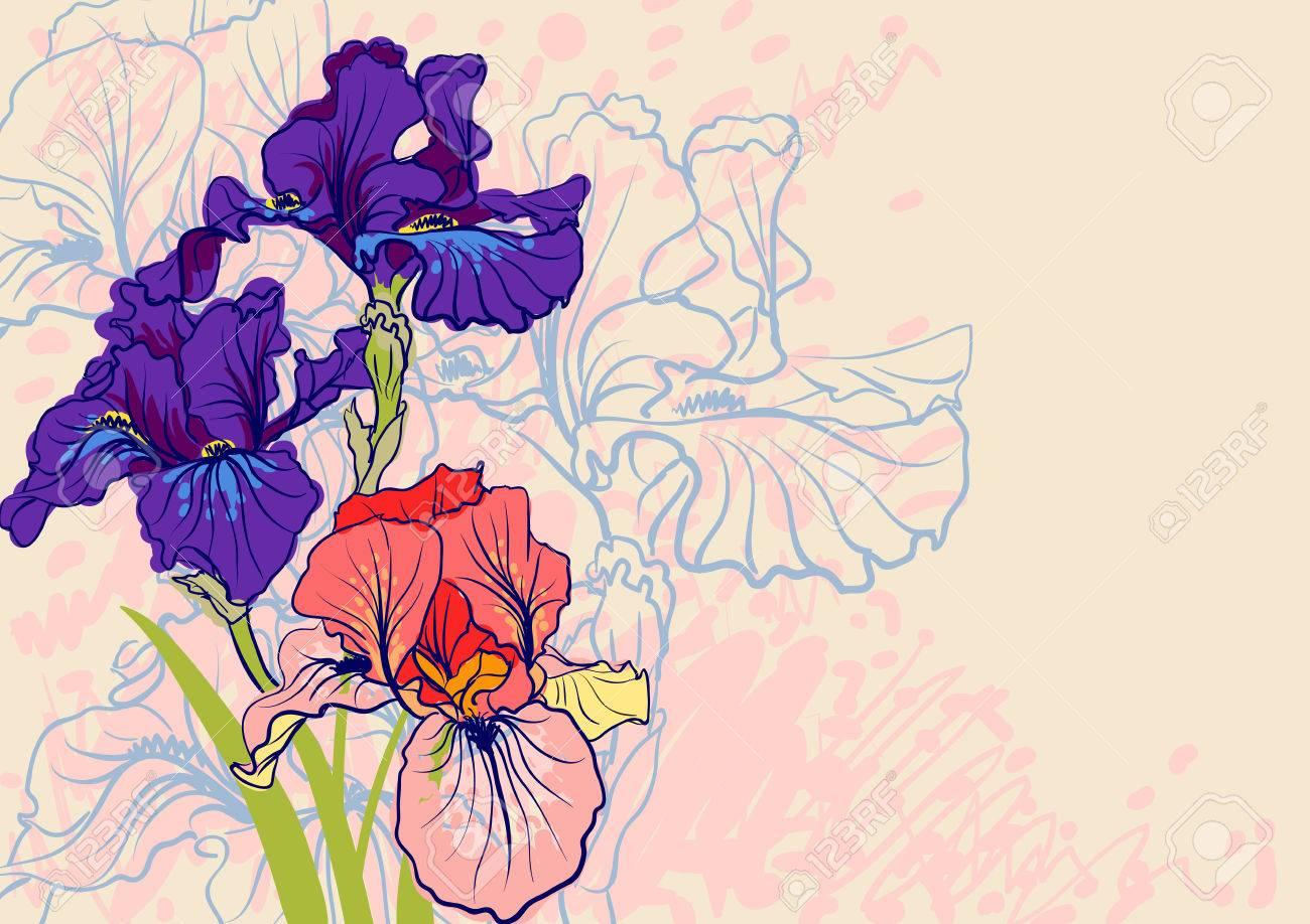 Decorative designs of iris flowers stock photo picture and royalty decorative designs of iris flowers stock photo 23010088 izmirmasajfo Image collections