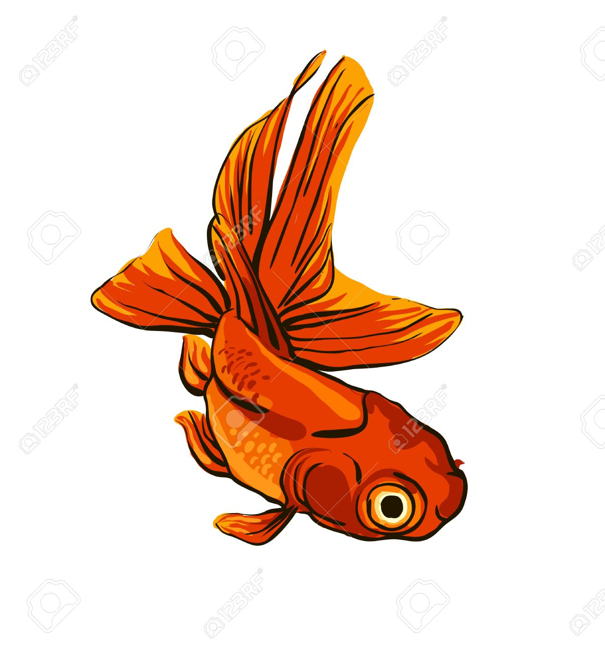 649 Koi Fish Vector Stock Illustrations, Cliparts And Royalty Free ...