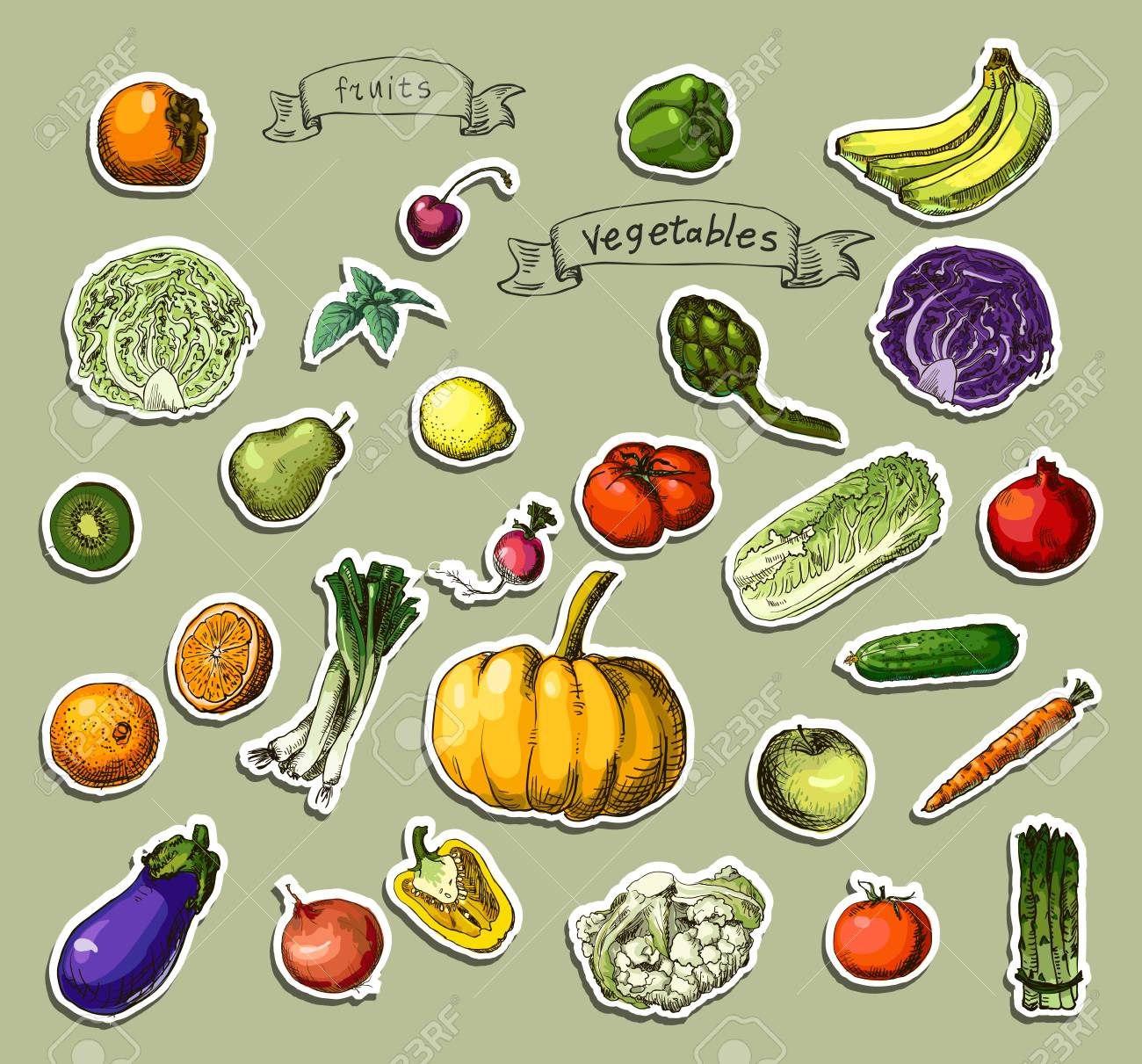 ベクトル イラスト手描き野菜一連の果物のイラスト素材ベクタ Image
