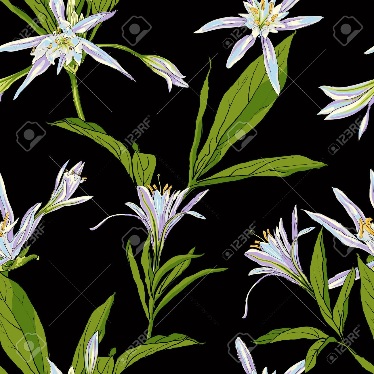 Hand Drawn Flowers Lilies On A Black Background Isolated Vector