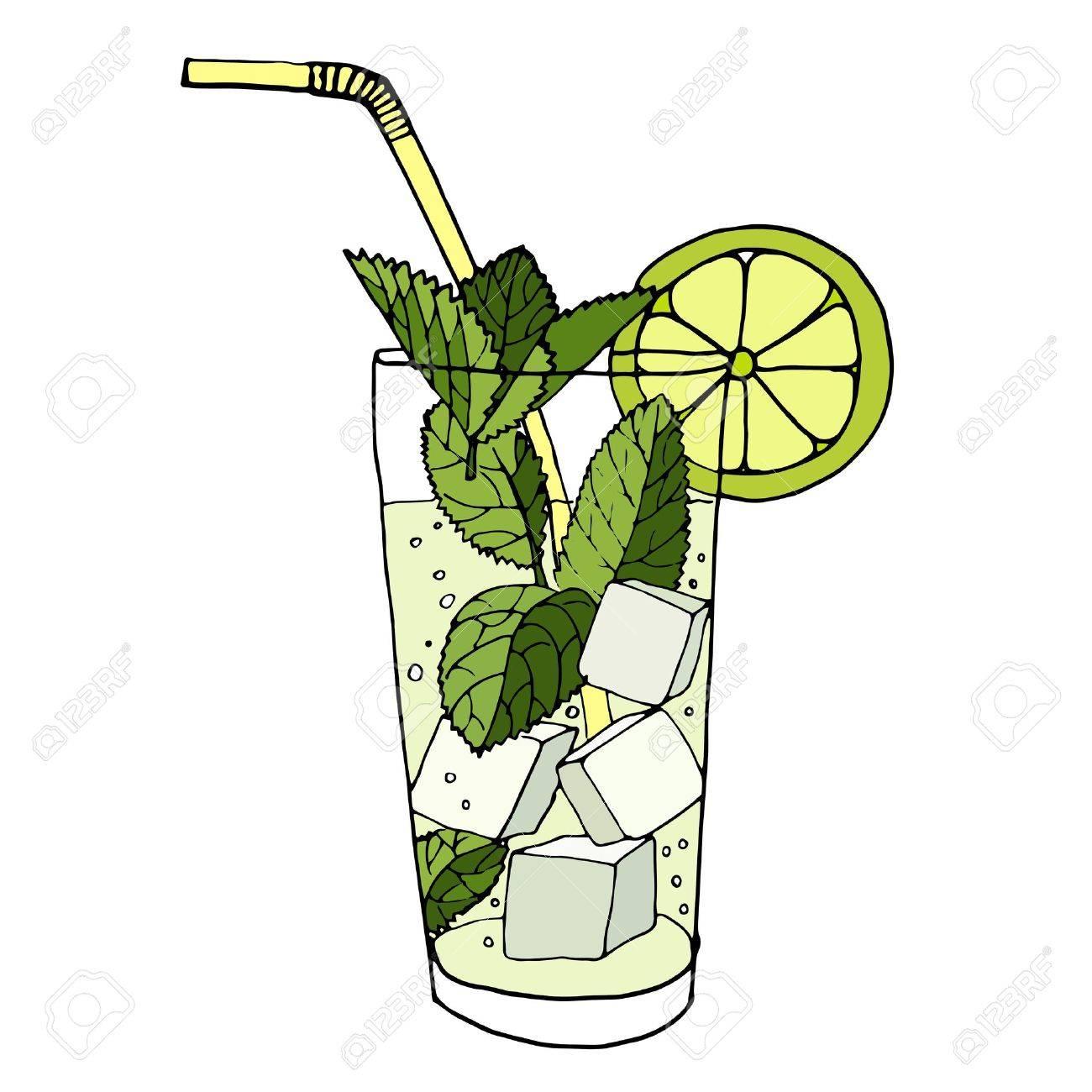 Hand drawn vector illustration of cocktail mojito - 44121368