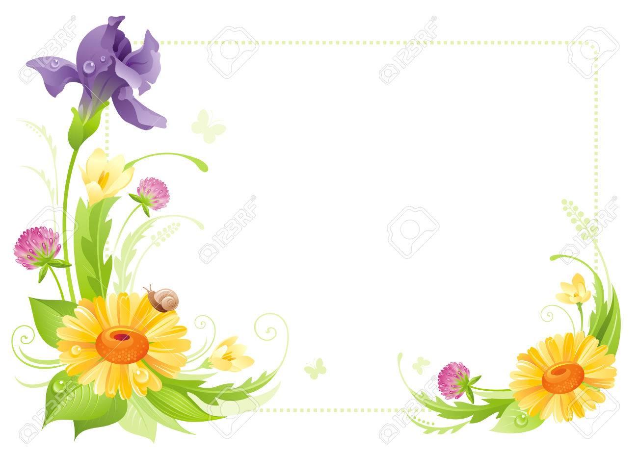 Aislado Marco De Flores Fondo Blanco. Primavera Verano Ilustración ...