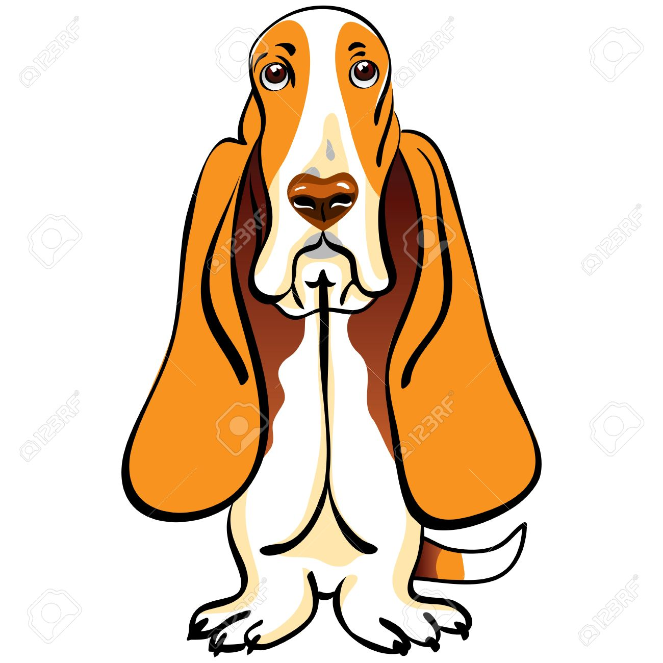1 000 basset hound stock illustrations cliparts and royalty free rh 123rf com basset hound puppy clipart basset hound clipart