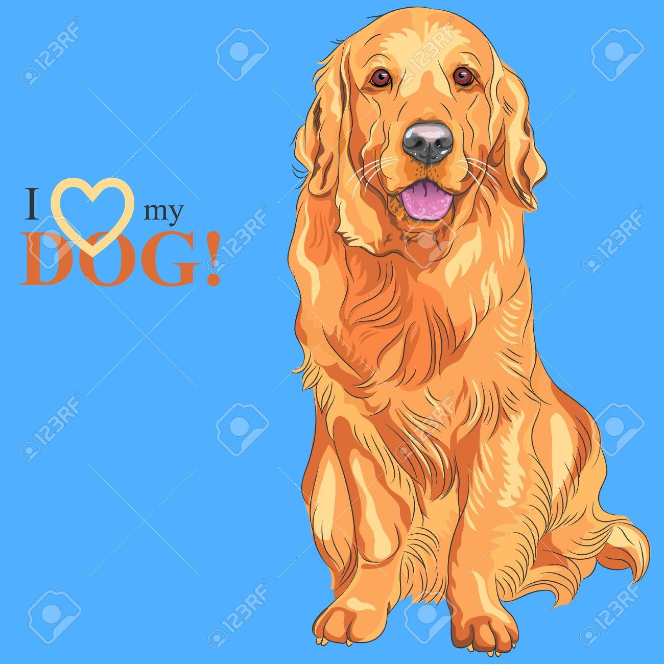 Vector smiling red gun dog breed Golden Retriever sitting on the blue background Stock Vector - 18802770
