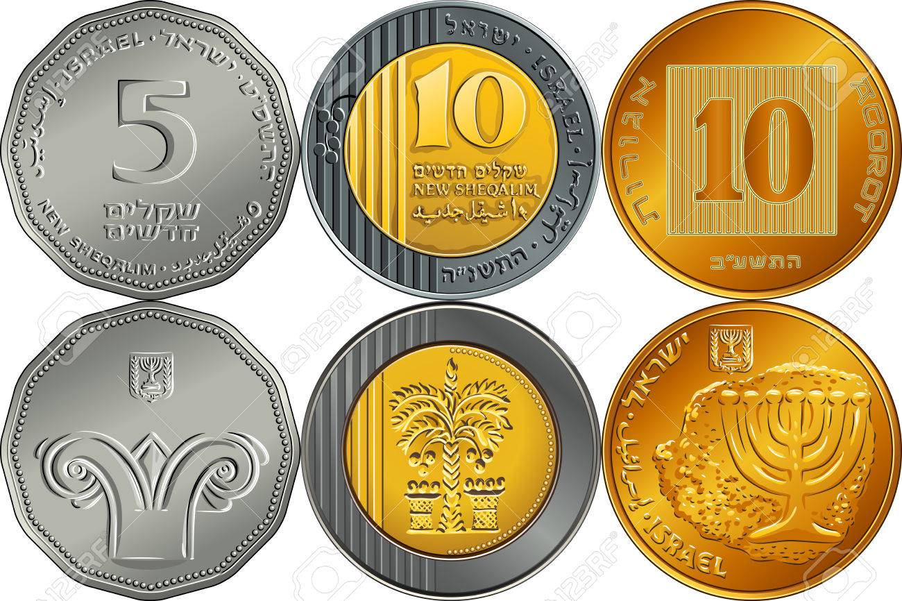 Vector Set reverse and obverse Israeli silver money five and ten shekel and ten agorot coins - 51336882