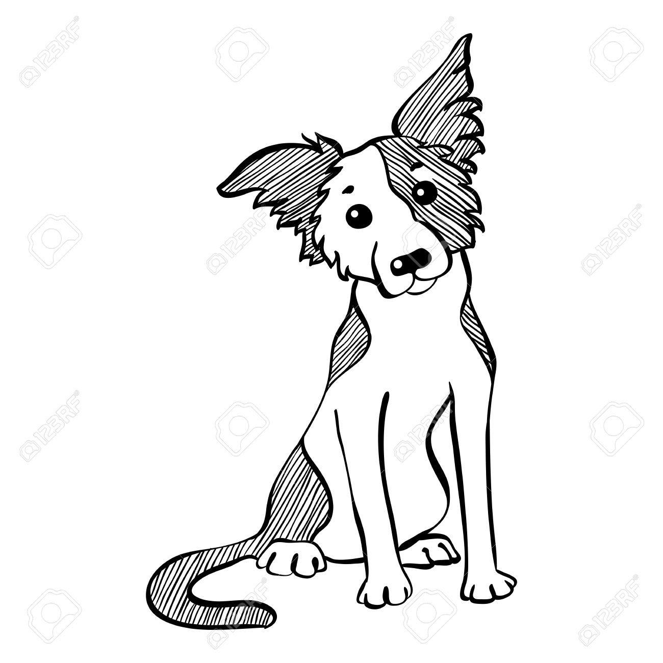 Banque dimages sketch drôle chien border collie race assis main dessin vectoriel