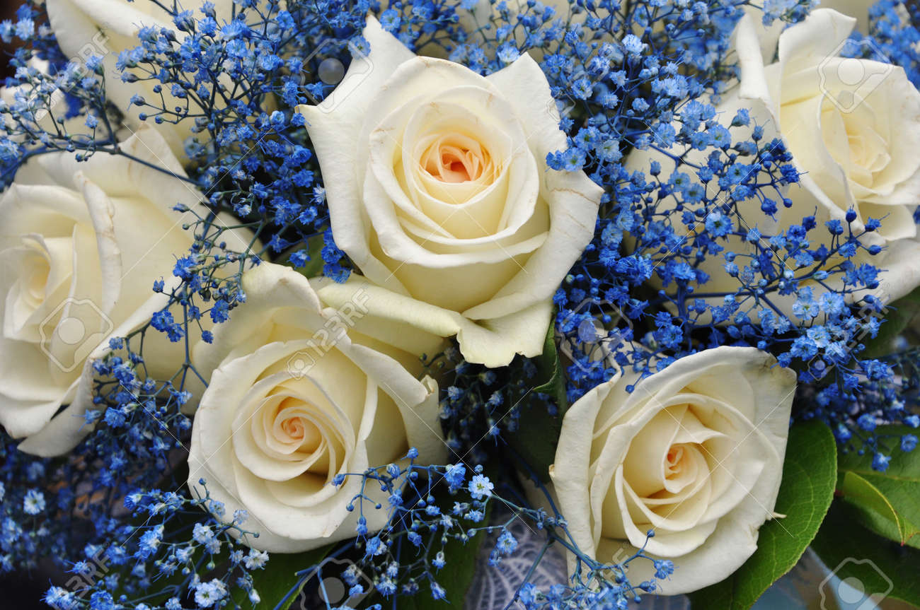 Wedding Bouquet With White Roses And Blue Flowers Stock Photo