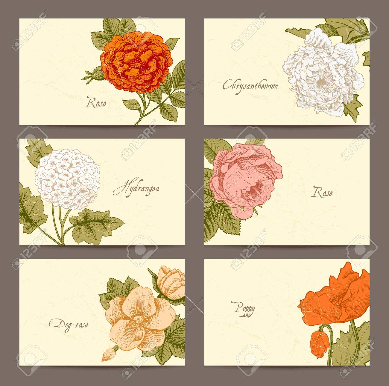 Set Of Vintage Floral Horizontal Business Cards Royalty Free ...