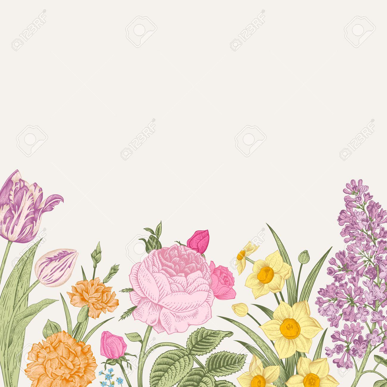 Summer Floral Vintage Vector Background Blossoming Garden - Colorful flower garden background