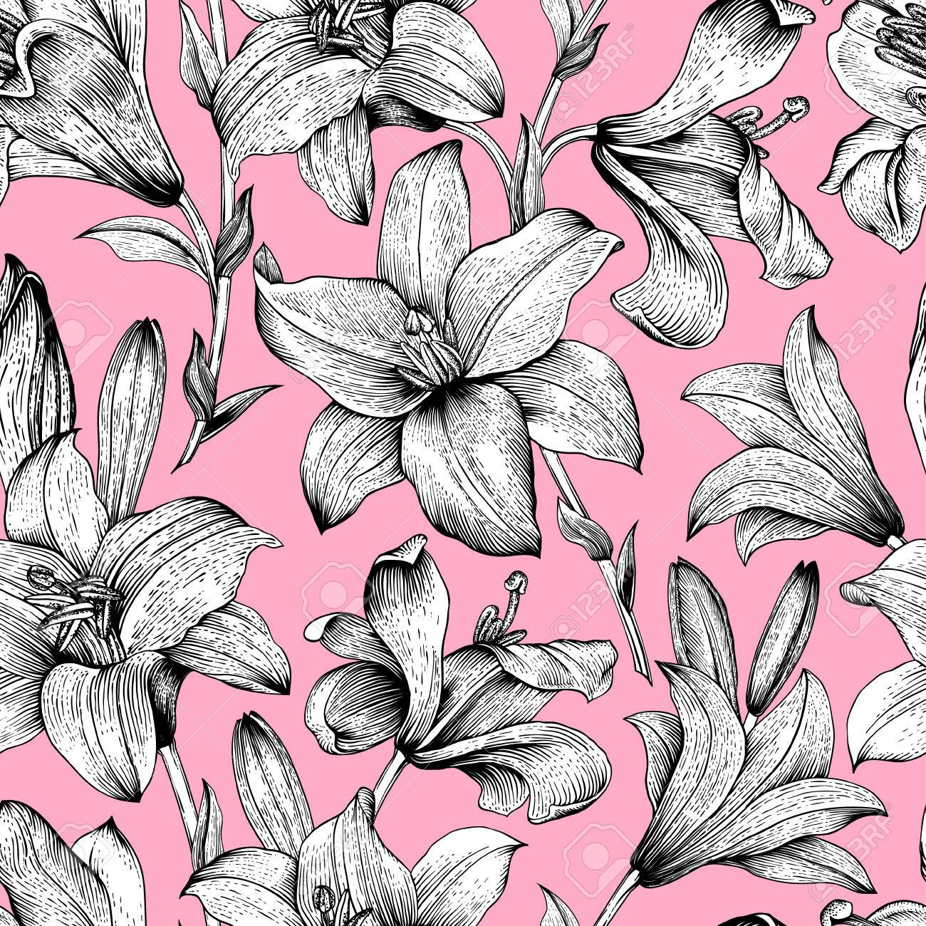 Seamless vector floral pattern black and white royal lilies seamless vector floral pattern black and white royal lilies flowers on a pink background dhlflorist Choice Image