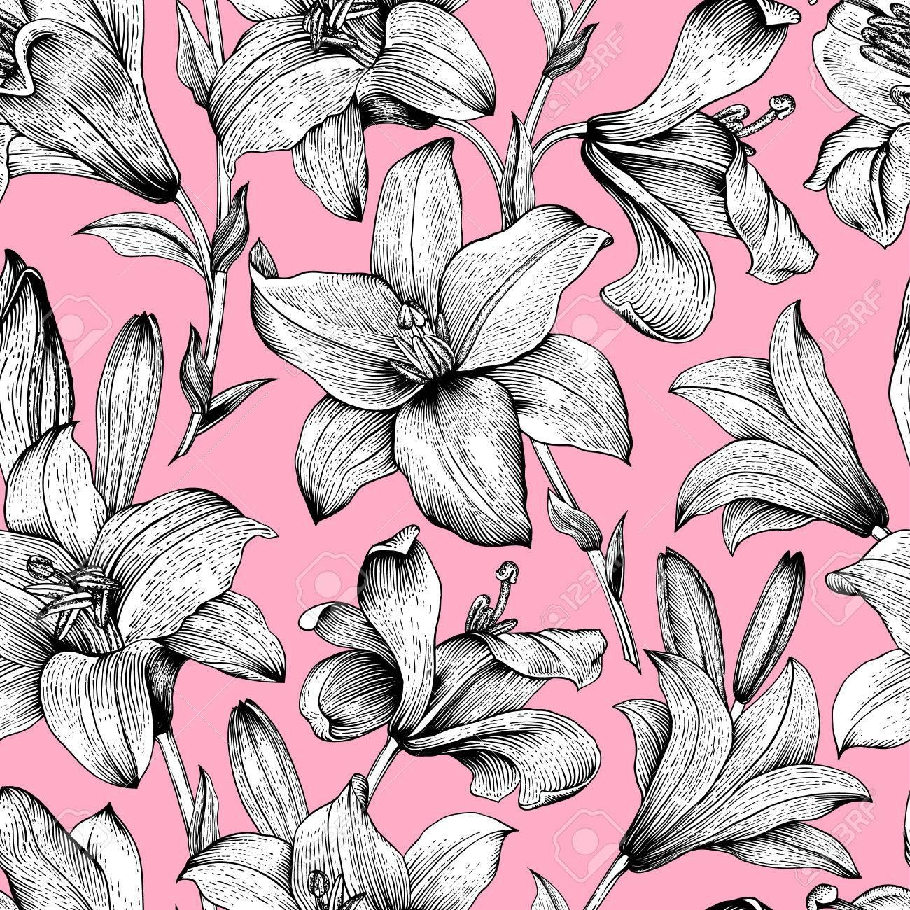 Patron Floral Vector Transparente Blanco Y Negro Lirios Reales Flores Sobre Un Fondo Rosa